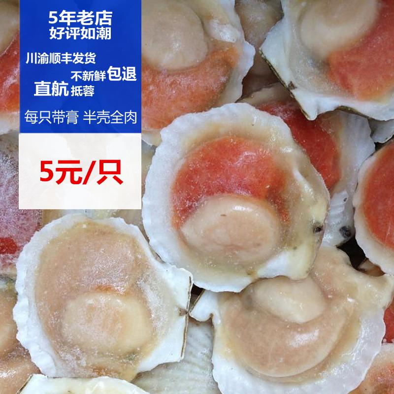 成都海鲜配送 专柜正品 大连獐子岛产 冷冻扇贝 5元1只 半壳全肉