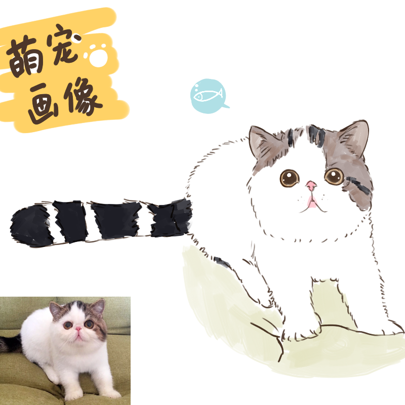宠物画像q版卡通形象设计定制动物转手绘漫画插画