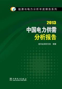 包邮正版B-能源与电力分析年度报告系列:2013中国电力供需分析报