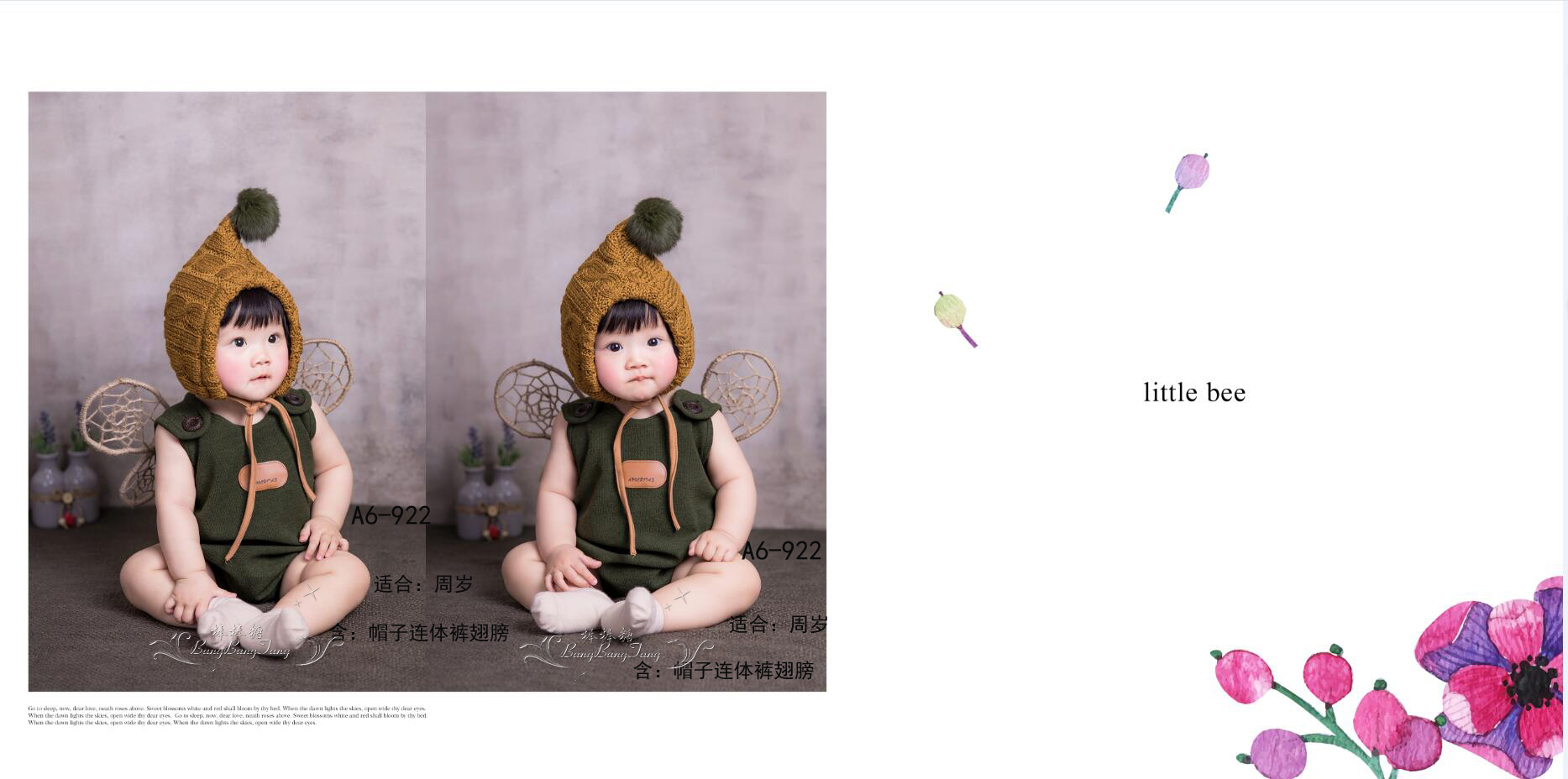 2017 chickens in the new age of children's photography studio baby garment one hundred days photo photo style clothes