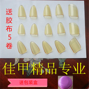 Professional quality master Pipa nail trumpet adult child picks manufacturers send special tape package