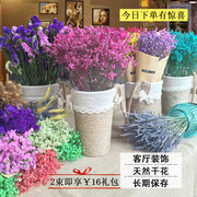 The dried flower bouquet of Yunnan natural dried flower floral DIY I really forget the living room decoration flower grass crystal stars