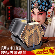 Dunhuang erhu Python beginners musical instrument manufacturers selling authentic adult children common huqin
