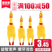 Chicken cock dog toys Teddy bull screaming chicken chicken chicken Guaijiao desperate yellow chicken toy toy