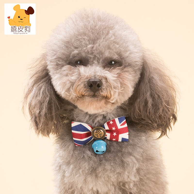 The dog dog collar Hippie bow tie Tactic Bichon puppy bell ornaments cat collar pet accessories