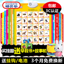 Cat Bell sound charts phonetic perception of young children early childhood toys baby sounds audio flashcards cards