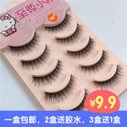A box of 5 kittens post installed 06 false eyelash eyelash natural nude make-up day makeup makeup simulation hard stems