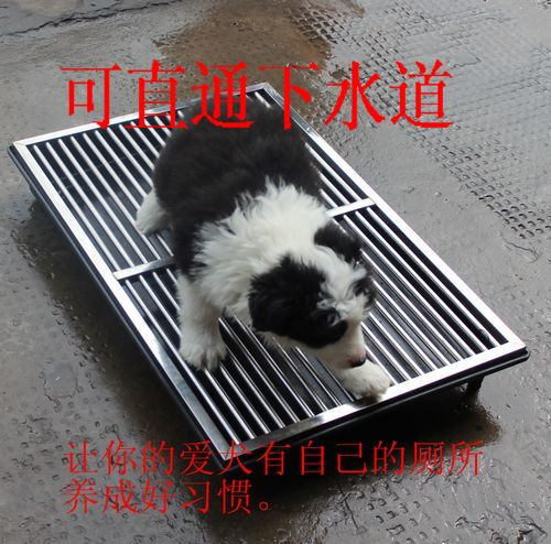 Stainless steel toilet pet dog Small medium-sized dog large teddy golden retriever Through the sewer