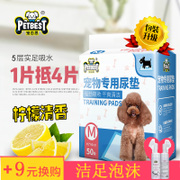 Dog pad pad thickening 100 deodorant urine not pet supplies diapers dog diapers absorbent pad training Teddy