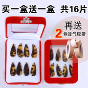 Zheng nail professional children's professional groove plane fake nails large and medium sized 16 only to send breathable tape