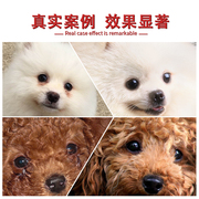 Invalid return dog eye drops eye drops eye drops kangjunxiaoyan pet cat and dog with a tear to gum