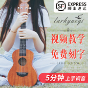 Feyny Kriri Beginner Student Adult Female 23 in. Urik Kep Guitar Ukulele Guitar