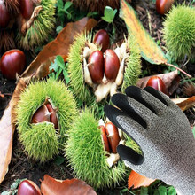 The new chestnut picking proof gloves with stab gloves and protective gloves peeling durian high strength flexible waterproof gloves
