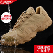 In many outdoor shoes in autumn and winter sports shoes hiking hiking shoes slip waterproof hiking shoes for tactical low male