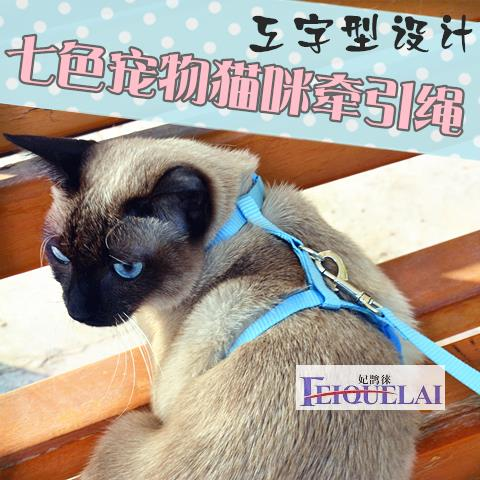 My cat 2017 special strap rope chain pet cat cat walk home traction belt DB0001357