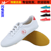 Tai Chi shoes sports shoes and children's star authentic martial arts shoes canvas shoes Dichotomanthes bottom Taiji Kungfu shoes