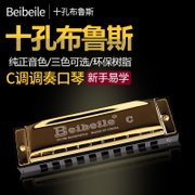 Bruce played 10 holes Shueisha diatonic harmonica professional beginner students of boys and girls