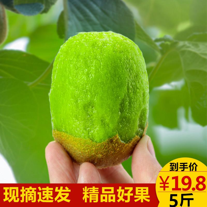 Купить Киви  в Китае, в интернет магазине таобао на русском языке