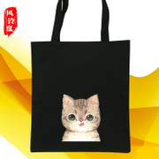 The Korean version of the simple canvas bag handbag shoulder Sen female singles students bag factory direct wholesale shopping bag
