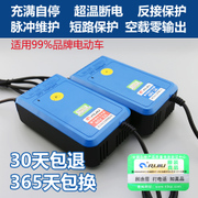 Smart electric car charger 48V20AH car battery charger 48V12Ah Emma Yadi Chaowei day