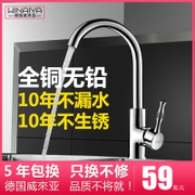 The German Weilaiya copper main kitchen faucet hot and cold vegetable washing basin 304 stainless steel cold sink faucet
