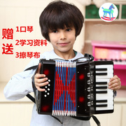 Export to Europe 8 large professional accordion bass 17 key adult children learning musical instruments music education