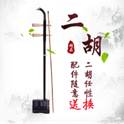 Erhu adult children general beginners practice playing professional grading test Suzhou genuine Hu Qin
