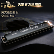 The 24 hole harmonica for beginners children adult students C professional senior high school teaching harmonica