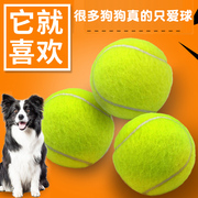 Dog toy ball ball Tactic golden retriever bite tennis Pet Puppy Labrador puppy toys molar