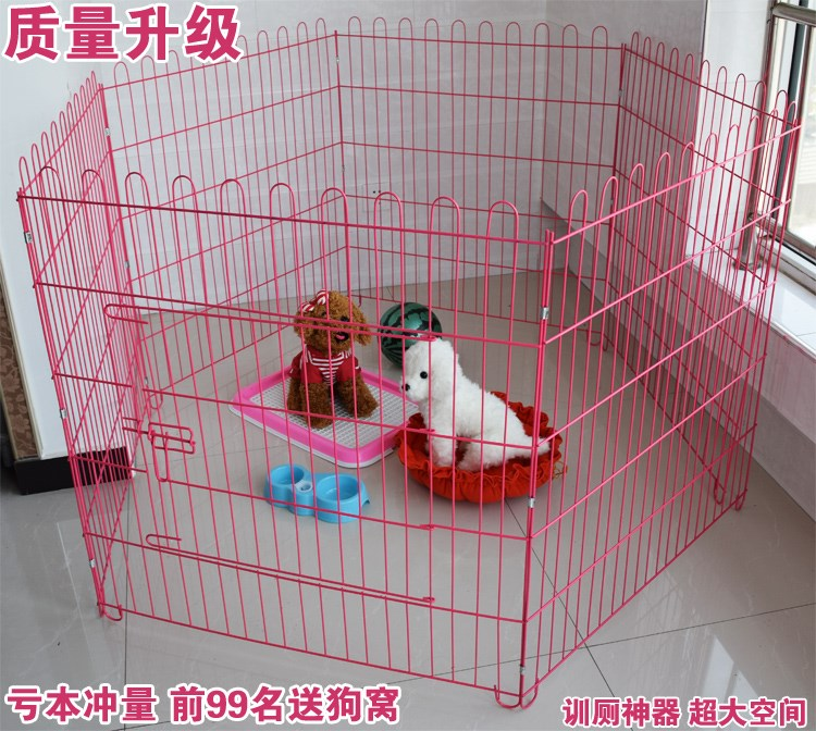 Dogs, dogs, fences, dogs, iron bars, pet dogs, cages, Teddy puppies, small dogs, toilet articles