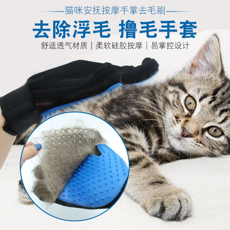 The cat cat pet comb massage comb brush hair brush roll cat to cat in gloves bath brush brush cat