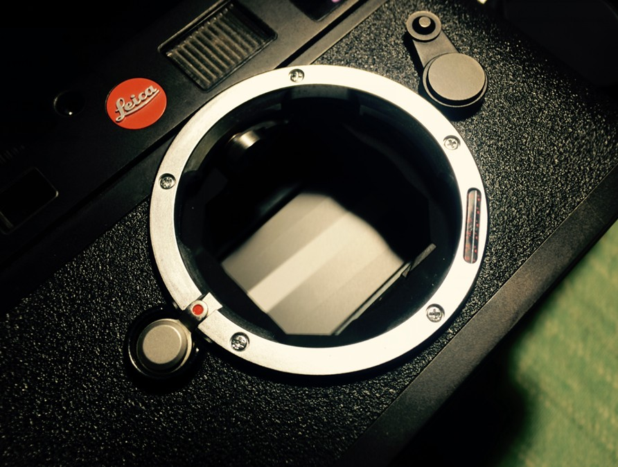 96 new LEICA LEICA M8 shutter 5000 + for single use transfer no problem