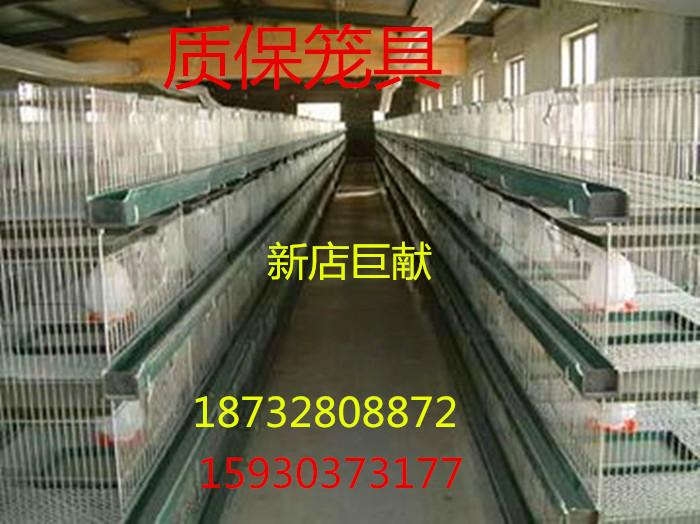 DeeAnn bold young chicken coop special offer encryption cage 4 layer one vertical chicken breeding cage brood amount