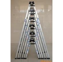 Сокровище богатые RTCL-8| восемь ранг алюминиевых сплавов лестница | прямо лошадь лестница | елочка лестница | двойной домой | промышленность лестница 2.5 метр