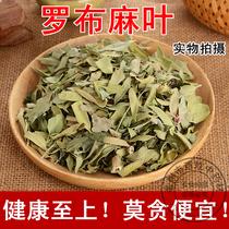 Plantes médicinales authentique apocynum feuilles Xinjiang spécial apocynum thé non-sauvage frais 500g