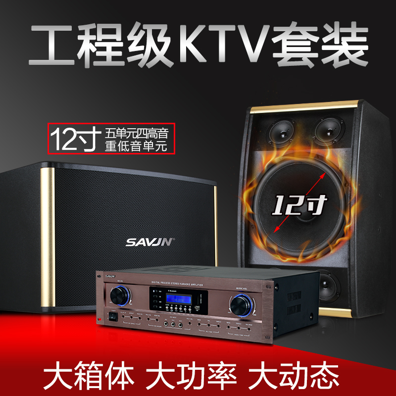 Svenny SK-900 12 inch professional ktv audio set room card package conference equipment stage family
