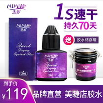 Graft eyelashes glue eyelashes shop dedicated to ultra-stick dry anti-allergy planting fake fast dry lasting 70 days