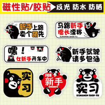 Kumamoto Bear novice on the road car stickers magnetic creative funny internship logo Reflective waterproof car stickers for female drivers
