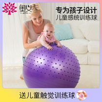 Baby early education yoga ball thickened explosion-proof dragon ball Childrens sensory training ball balance ball Baby training