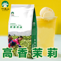 Yelanshan Jasmine Green Tea Milk Tea Shop Specialized Tea Jasmine Green Tea Milk Green Coco Jasmine Tea 500g Raw Material