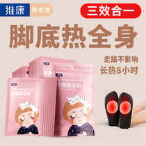 Wellcome warm feet paste female warm foot pad warm baby spontaneous hot post insole winter warm and cold ai grass artifact