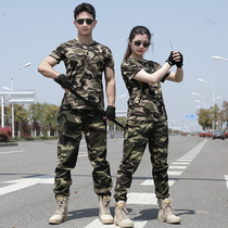 T-Shirt Summer short sleeve cotton camouflage suit Mens military fans physical training uniforms Military training camouflage pants Summer thin style