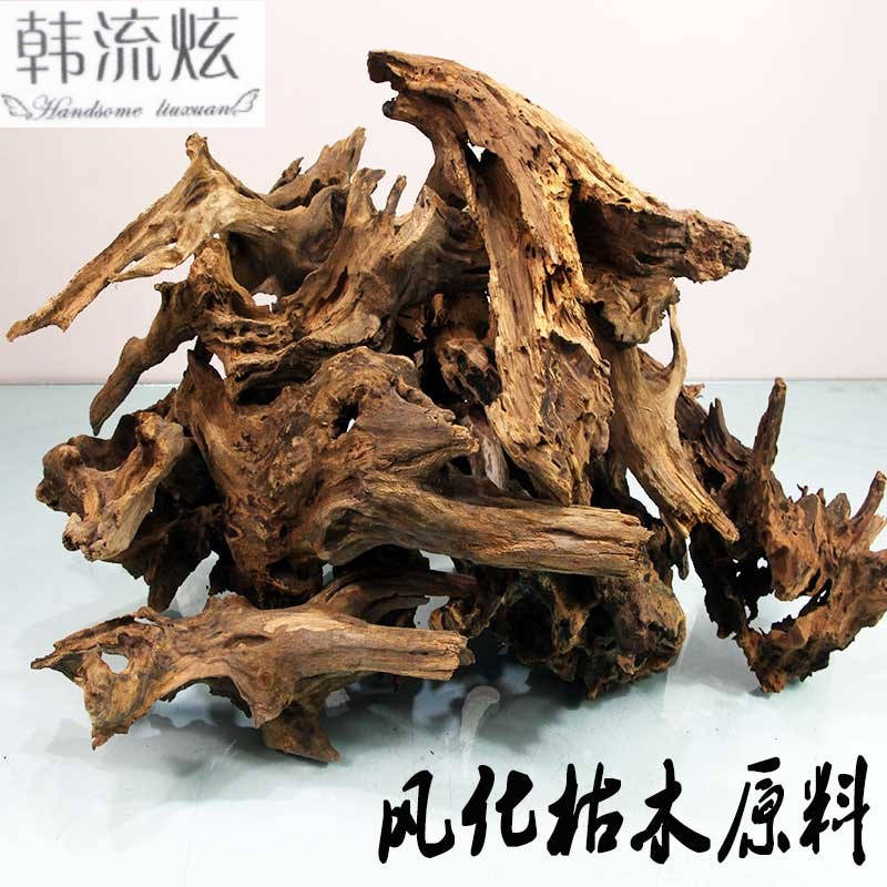 Microlandscape Small Tree Root Material Landscape Decay Wood Branch Pineapple Support Rainforest Water and Land Tank Diy Botanical Basin