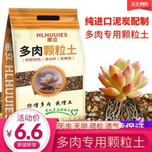 Huili Duo meat special granular nutrient soil plant import peat planting soil paving stone leaves inserted pure soil
