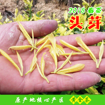 2018 New Tea Anji White Tea Anji Yellow Tea Gold Yeyemingqian Tea 50g Rare Green Tea