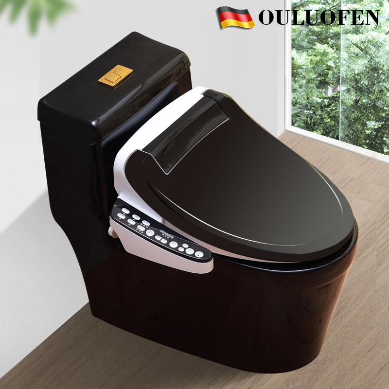 New Eurofin Sanitary Ware Creative Black Nordic High-end Intelligent Toilet Integrative Full-automatic toilet