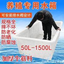 Lépaississement du tendon en plastique de lAquarium rectangulaire de réservoir deau domestique de grande taille de lAquarium de réservoir de stockage de poisson tortue de barils