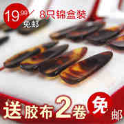 Zheng nail professional nail groove adult children guzheng bag mail sent 8 boxes of Guzheng tape nails