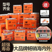 Aotedo motorcycle battery 12v maintenance-free dry battery 125 curved beam 12V 9a7a scooter 5a Universal