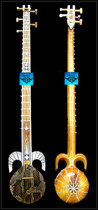 Viper skin professional secondary hotwap Xinjiang high-end ethnic musical instruments monopoly to send accessories